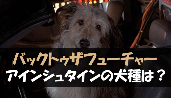 バックトゥザフューチャー 犬